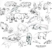 Zoo Studies by StudioPsycho