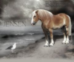 Beqanna: Jensen and the Gull by legendpendragon9