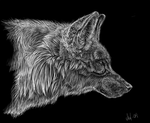 Wolf faux scratchboard by nightspiritwing