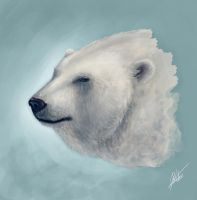 Polar Bear Sketch by ARTdesk