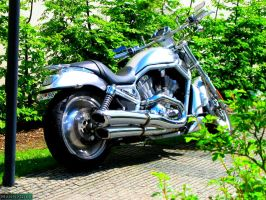 Silver motorcycle by MannyDiax