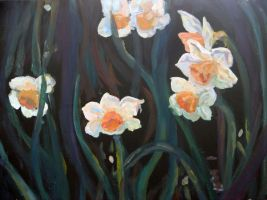 Narcissus by RebexTrip