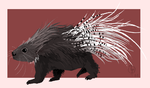 Porcupine by painted-flamingo