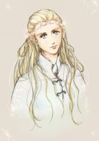 -Prince Of Mirkwood- by tomuyu
