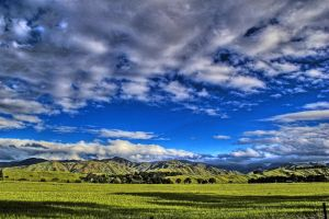 Marlborough Gold by carterr