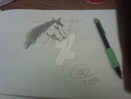 how to draw a horse by markcrilley -attempted by rodsmith23