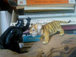 Darth Vader vs Tiger by fh8888