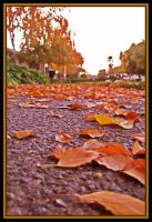 Autumn trailing to Winter by TeaPhotography