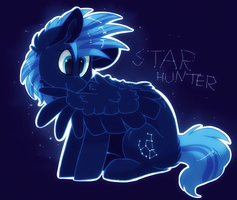Star Hunter by HiccupsDoesArt