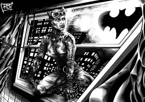 CATWOMAN 2 by PAULSWAIN