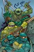 Turtle Power! by ShadowMaginis