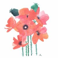 Pink poppies by isletree