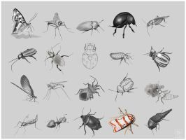 20 Insects by JanaW