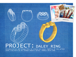 PROJECT: Daley Ring by carbint