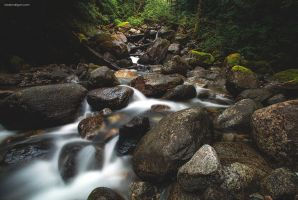 Soft Waters by TaraLundriganPhoto