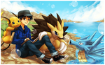 Brent's Pokemon Team (take 2) by deviantartbrowsa