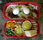 Rainy Day Bento by Demi-Plum