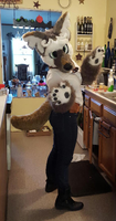 Mad-Eye partial suit (Completed) by Cinder42