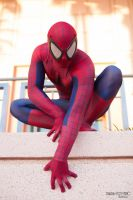 Spidey Hanging Out by PAPANOTZZI