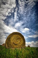 Straw bales by tomsumartin