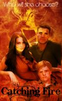 Catching Fire: Choices by 4thElementGraphics