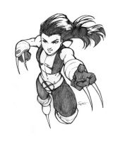 X-23 by luisflores