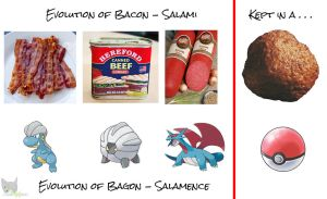 Evolution Chain of Meat by Mega-X-stream