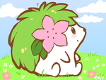Shaymin, present for Keshi by drill-tail