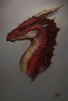 maybe Smaug by Sindacollo