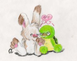 The Turtle and the Bunny by milleniumocarina