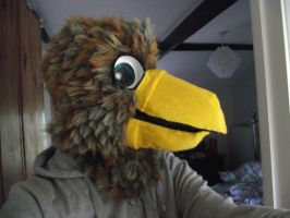 Brown eagle fursuit head - View 4 by THEsquiddybum