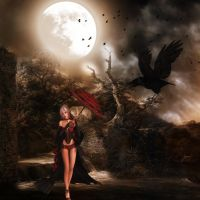night of the raven by shipleygirl