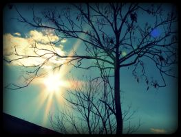 a moment in the sun by x--photographygirl