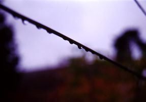 Raindrops by Atle