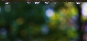 Six Little Raindrops by martiansummer