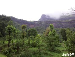 Bhandardara Scenery 3 by sds49in