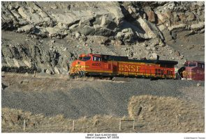 BNSF Dash 9-44CW 4802 by hunter1828