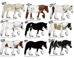 Gypsy Vanner Adoptables - 2 Left! by WesternSpurs