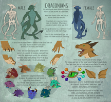 Draconian Species Reference by LauralienArt