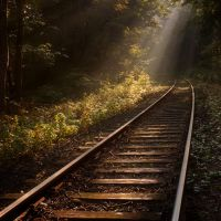 Tracks to the light by wienwal