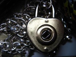 Heart shaped Lock by filtered-wish