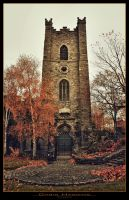 St. Audoen's Church by haggins11