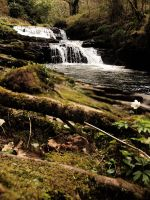 Clare Glens by Idle-Emma