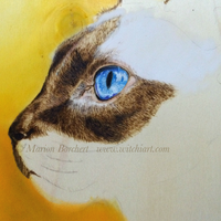 Siamese cat WIP by WitchiArt