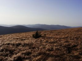 Mystery Bieszczady's Mountains by Luin-Tinuviel