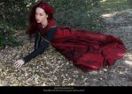 Rose Red12 by faestock