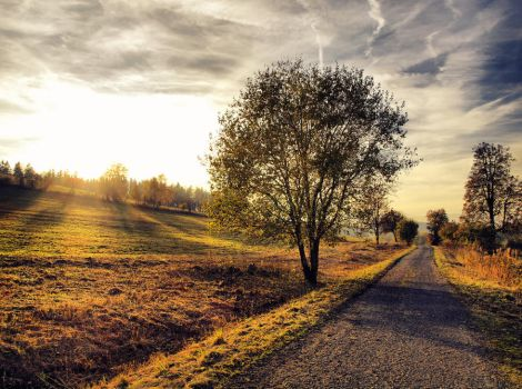 Autumn road 5 by FrantisekSpurny