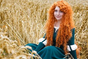 Merida (Brave) :: 01 by Deathly-Sora