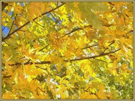 Painted Leaves 2 by Tailgun2009