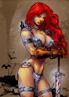 RED SONJA by ed benes by JOHNTORRE